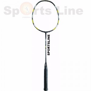 Ashaway Max Power AS-2000 Badminton Racquet