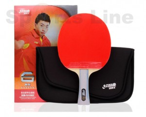 DHS R6002 Table Tennis Bat