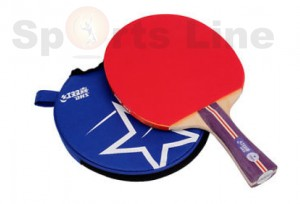 DHS R 1002 Table Tennis Bat